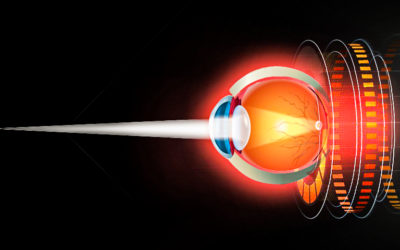 STEM CELL THERAPY FOR CORNEAL REGENERATION IN THE EYE