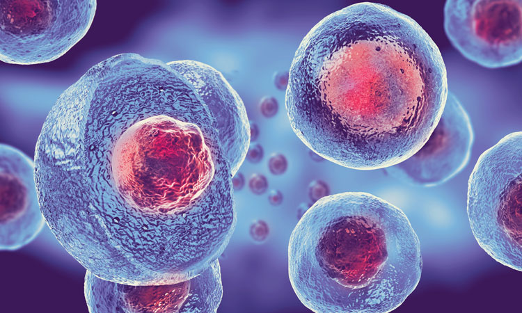 Cure common Incurable Disesaes with Stem Cell Therapy