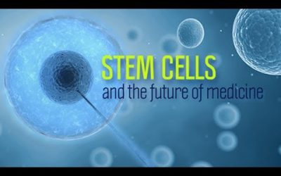 DOES STEM CELL THERAPY HELP IN THE TREATMENT OF NEUROPATHY?