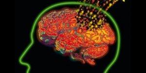 losing-brain-cells