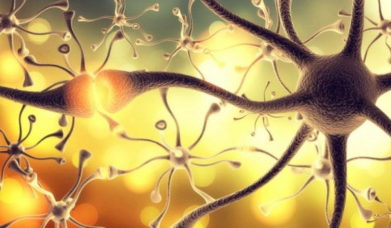 HOW TO DECREASE NERVE DAMAGE THROUGH STEM CELL THERAPY