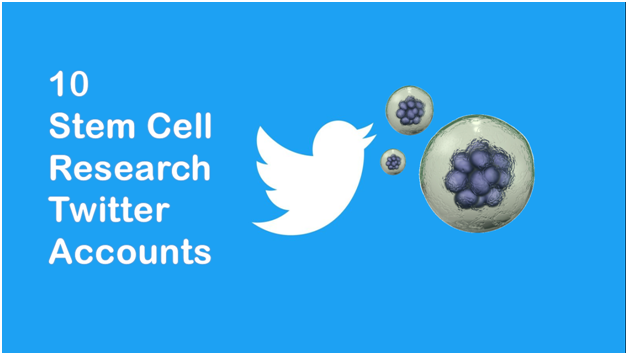Top 10 Twitter Accounts for Stem Cell Research
