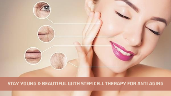 Stay Young And Beautiful With Stem Cell Therapy For Anti Aging