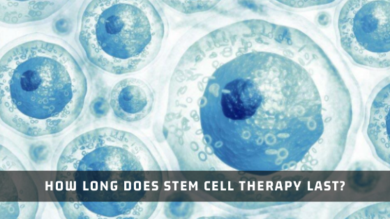 How Long Does Stem Cell Therapy Last?