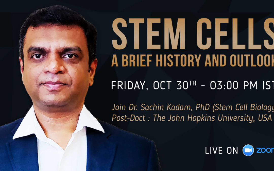 A brief history and outlook of stem cells