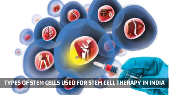 Types Of Stem Cells Used For Stem Cell Therapy In India