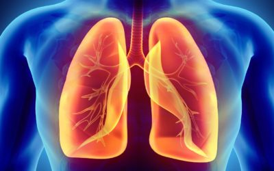 Can Stem Cell Therapy Repair Damaged Lungs?